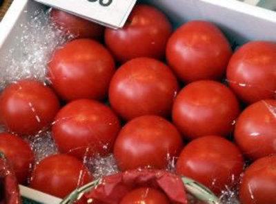 Tomato2_r